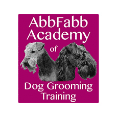 Our Dog Grooming Courses Abbfabb Academy Of Dog Grooming Training